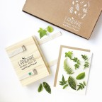 LANDARE Botanical Press Kit